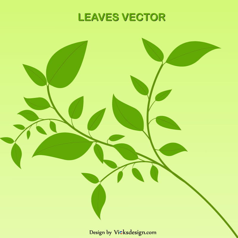 Leaves vector illustrations